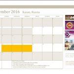 iMAES Workshop 22-24 November 2016 : Kazan, Russia